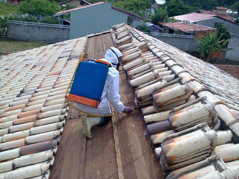Descupinização de Telhados